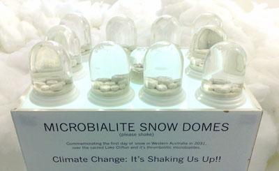 Snow-domes
